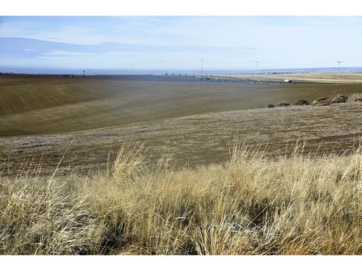 Walla Walla Country Acreage Lot For Sale