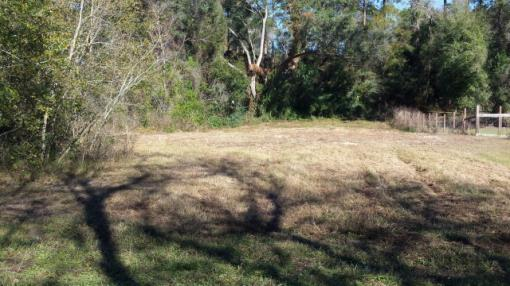 North Central Trenton Florida 0.48 Acre Lot