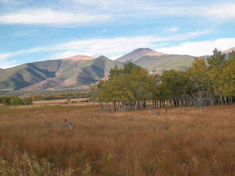 Colorado Mountain Views in Shared Ranch Community For Sale