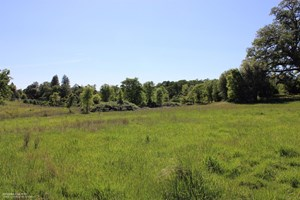 HISTORIC 35 ACRE CATTLE RANCH IN GRASS VALLEY