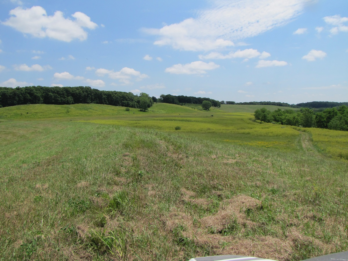 614 +/- Acres Recreational/Pasture Farm For Sale Northern MO