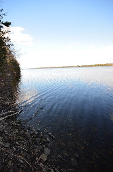 Maine Waterfront Land for Sale in Glenwood