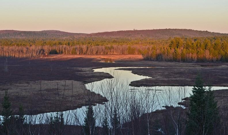 Maine Timberland Investment in Aurora