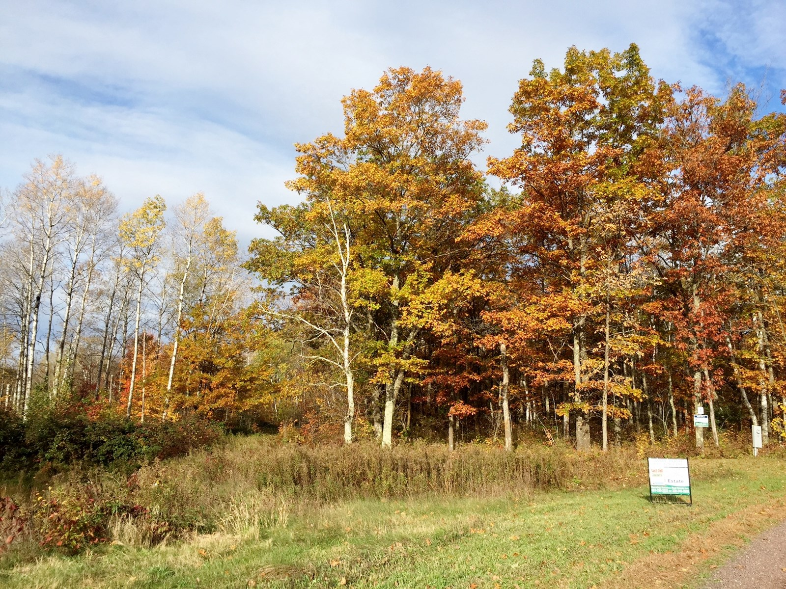 Wooded building lot near Sandstone, MN