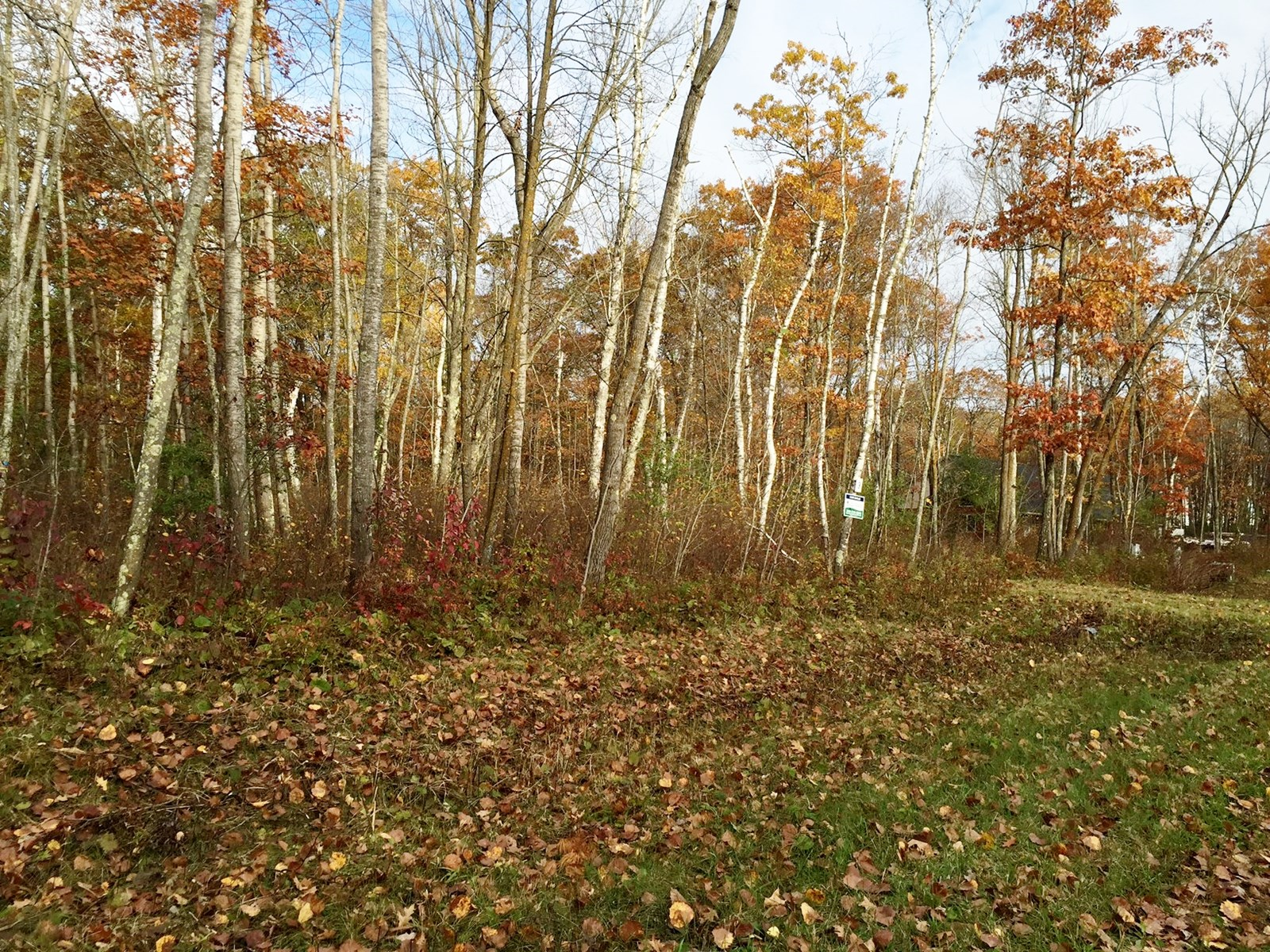2+ acre building lot for sale near Sandtone MN