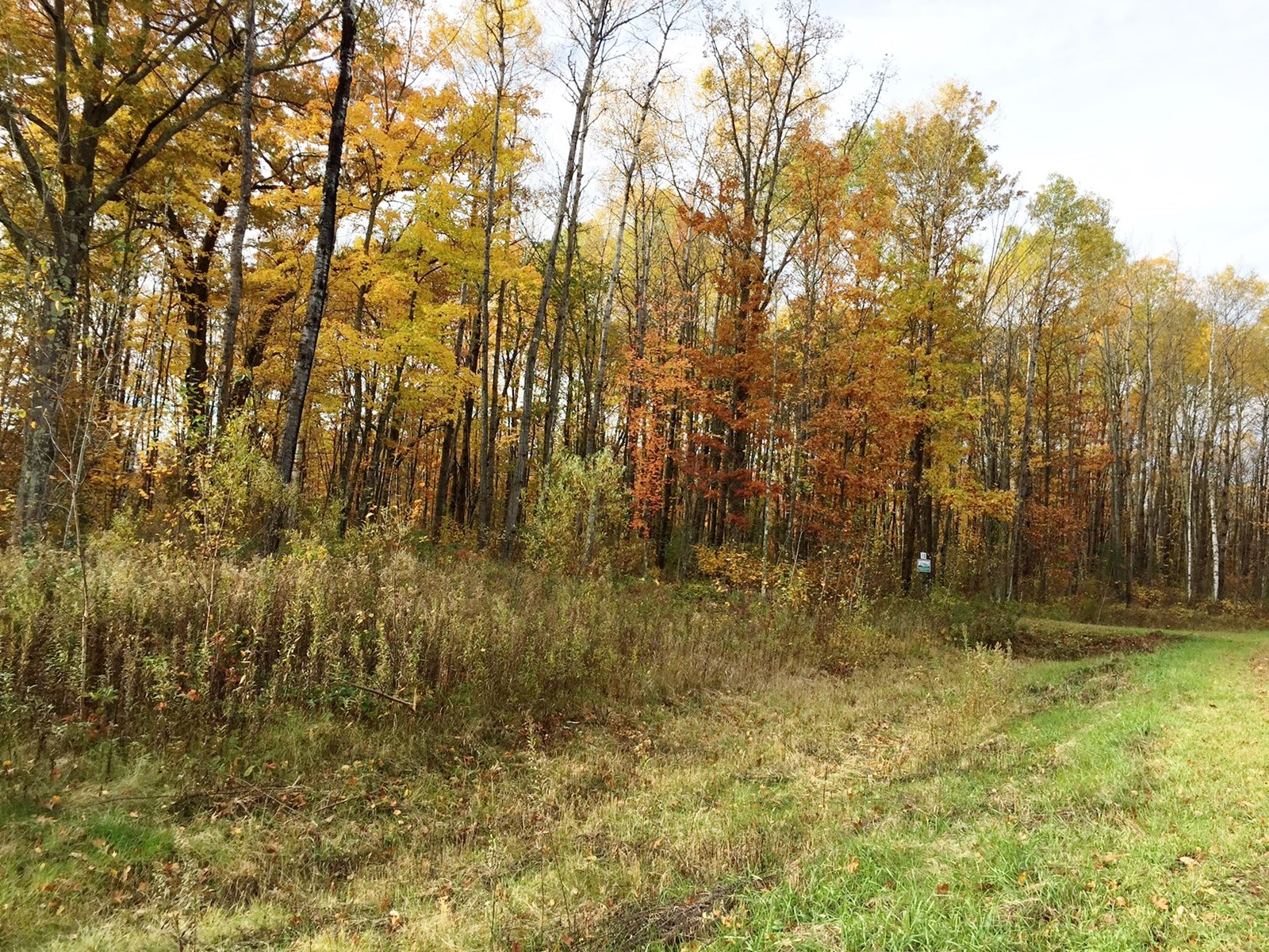 North Oaks Lot For Sale / Buildable / East Central Minnesota