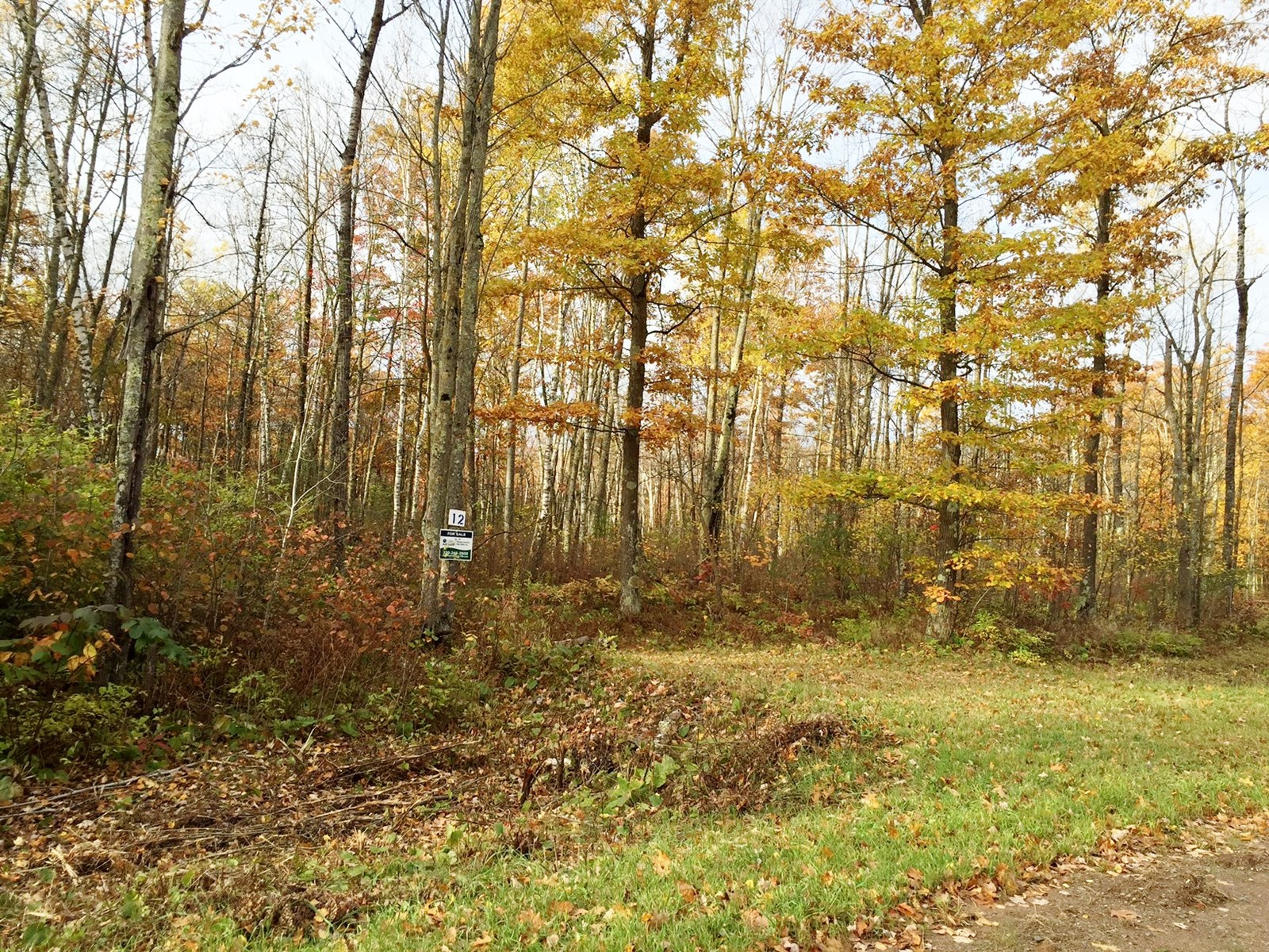 Building Lot for Sale near Sandstone / East Central MN