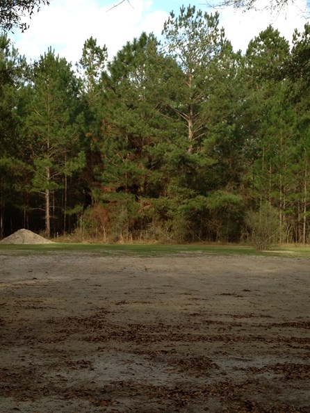 SOLD  Live Oak Florida Cleared Land, North Florida Land,