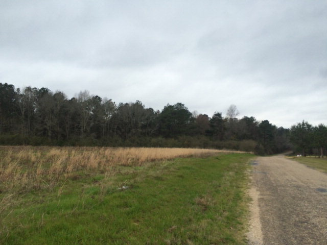 Walthall County Ms Land for Sale