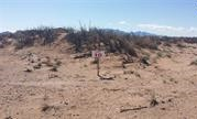 Land for sale in Deming NM. Luna County