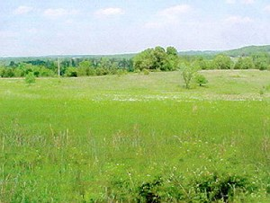 COMMERCIAL OR INDUSTRIAL PROPERTY FOR SALE-WEST PLAINS, MO