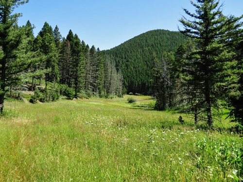 UNDER CONTRACT: Central MT Mountain Land For Sale Fergus