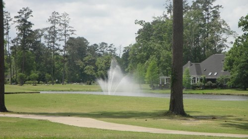 HALF ACRE GOLF COURSE SITE IN CARTER PLANTATION