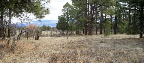 Golf Course Development Lot For Sale Near Ridgway Colorado