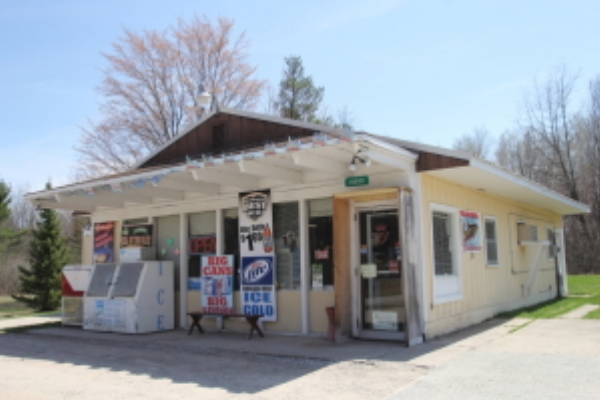 Business - Party Store for Sale Northern Atlanta Michigan