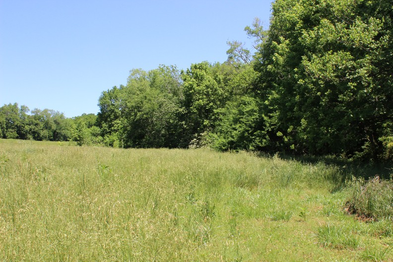 LYNNVILLE, TN GILES COUNTY 1.62 ACRES LAND ONLY FOR SALE