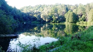 WATERFRONT HISTORIC RECREATIONAL HUNTING FOR SALE WI