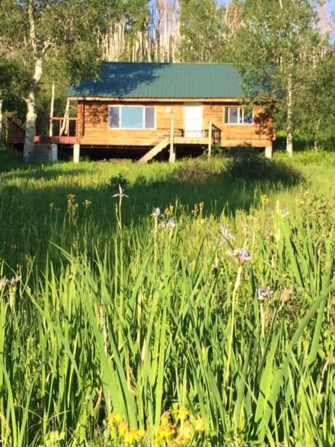 Mountain Cabin near Montrose, Colorado
