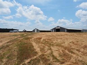 POULTRY BROILER FARM BASSFIELD MS JEFFERSON DAVIS