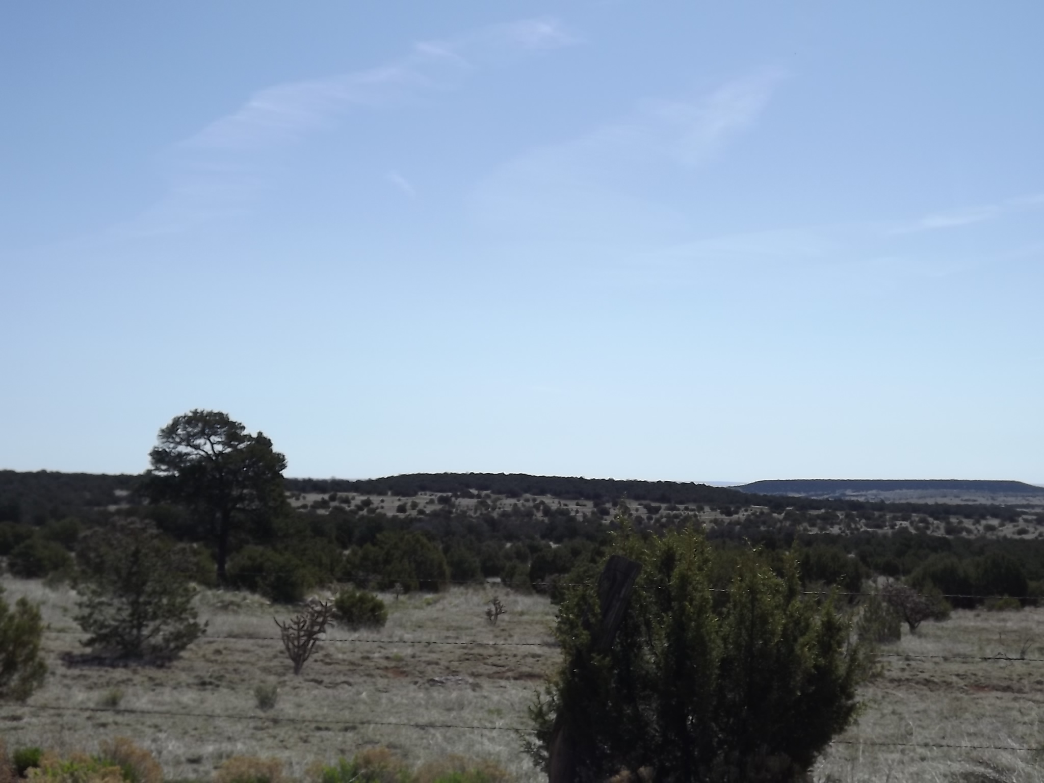 107 Acres New Mexico Mountains and Meadows