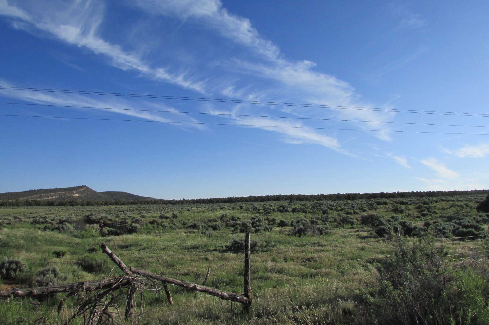 Southwest CO Acreage Recreational Land by BLM For Sale
