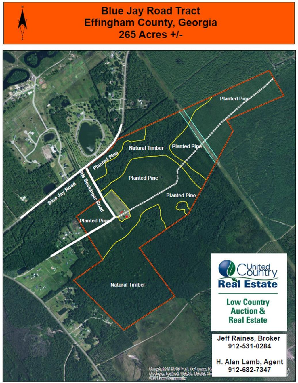 Development Acreage For Sale In Effingham County, GA