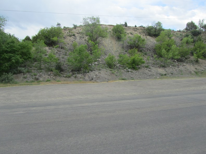 Prime Location, Commercial Lot in Collbran Co for Sale