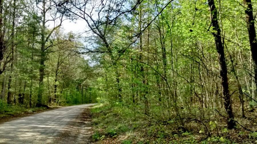 4.48 Acre Lunenburg County, Va Rural Homesite
