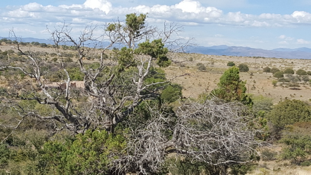 AVAILABLE LAND FOR SALE IN SILVER CITY, NM