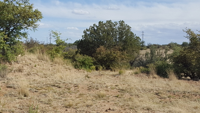SILVER CITY, NM LAND AVAILABLE FOR SALE
