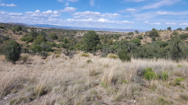 SILVER CITY, NM LAND FOR SALE