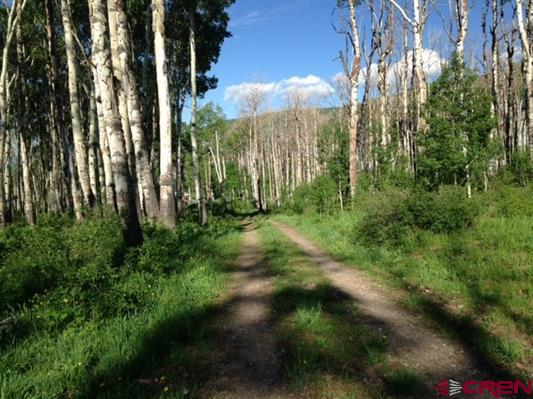 Colorado Aspen Wooded Lot With Mountain Views For Sale