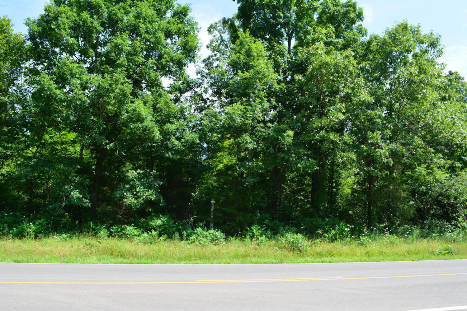 Vacant Land For Sale in Oregon County Missouri
