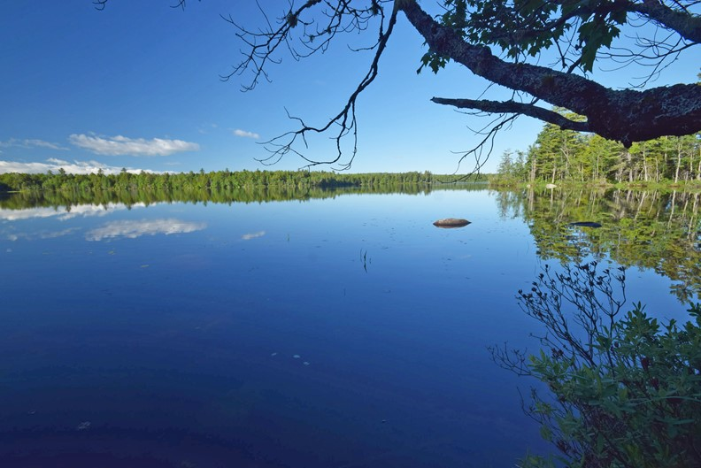 Maine Land for Sale in Lincoln ME