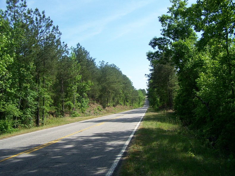 RURAL WINNSBORO, SC WOODED ACREAGE NEAR LAKE WATEREE
