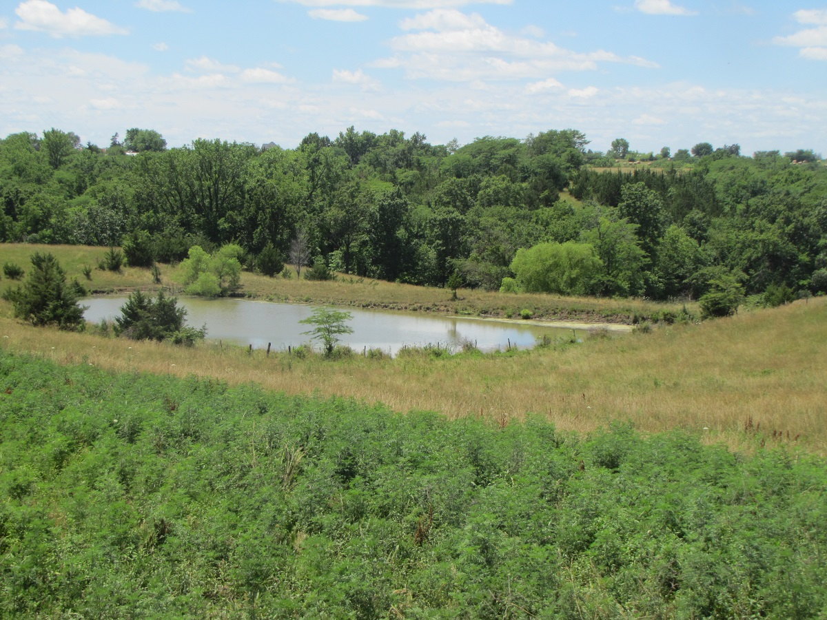 GRASS FARM NORTHERN MO FOR SALE, CATTLE PASTURE FOR SALE MO