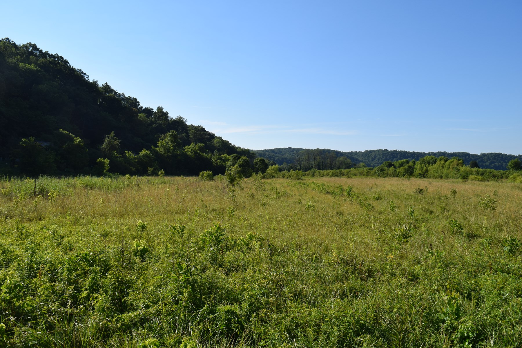 UNRESTRICTED TENN  LAND FOR SALE / BYBEE TENNESSEE 37713