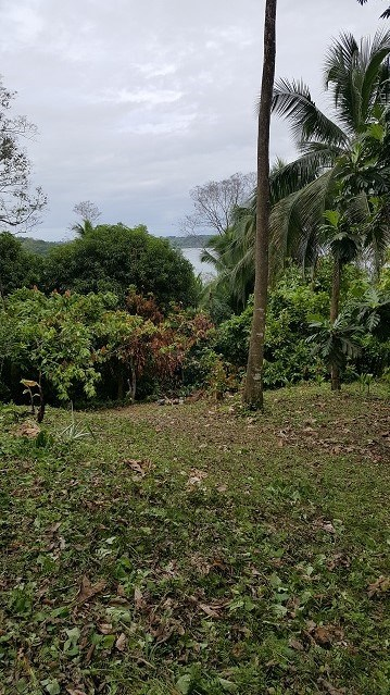 Oceanview 1 acre on Bastimentos, Bocas del Toro, Panama