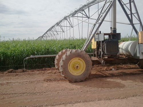 Irrigated farm in southern New Mexico