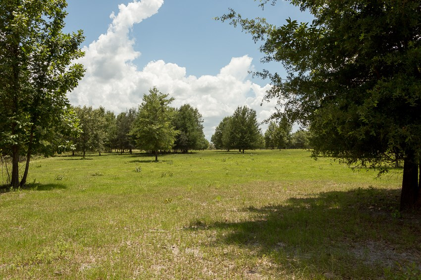 Land for sale in Ft White FL near Ichetucknee Springs