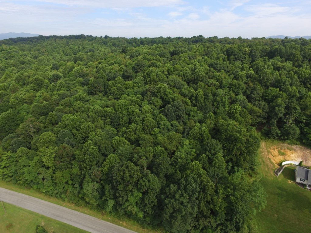 5.43 acre wooded building lot near New River