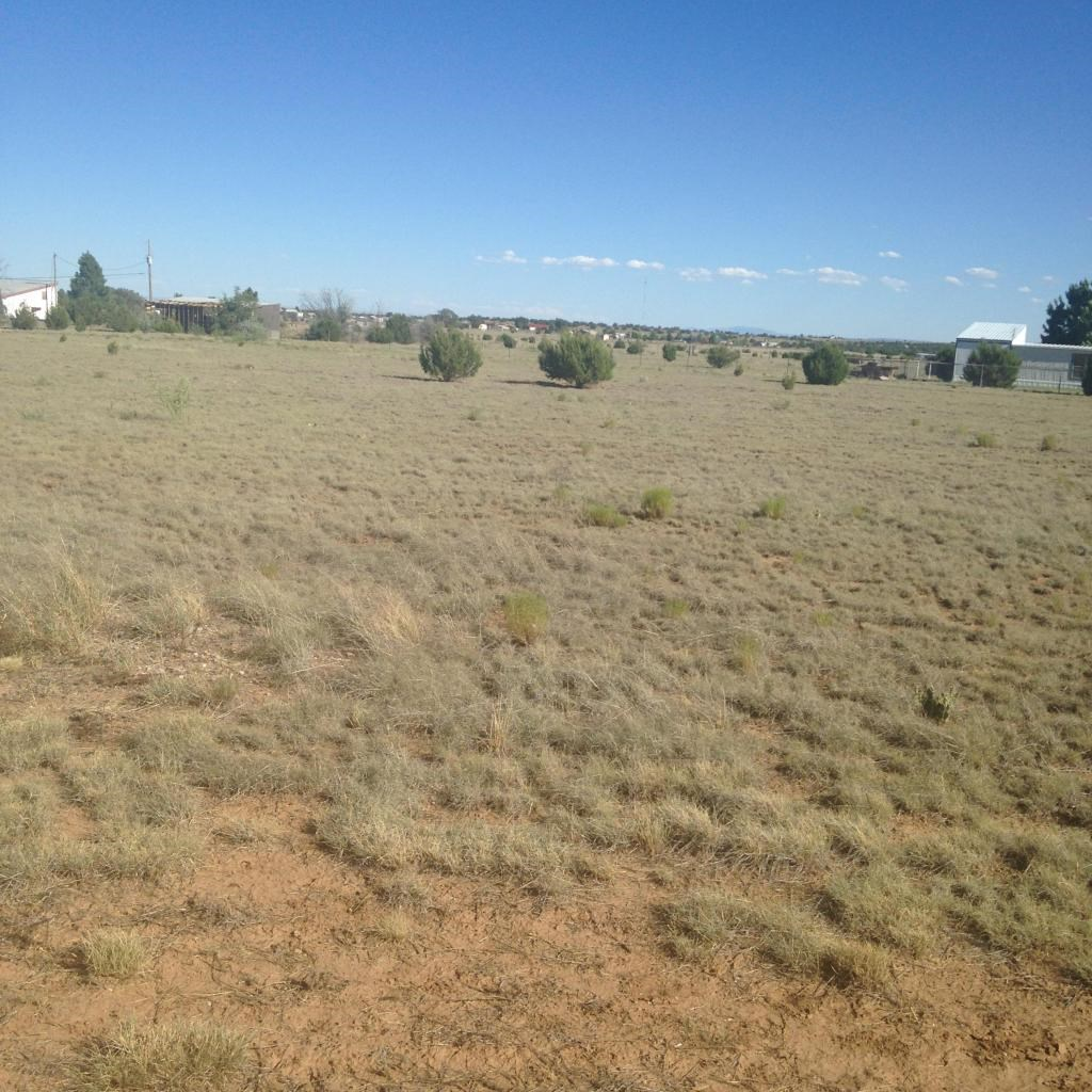 Country Home Lot For Sale Near Edgewood NM