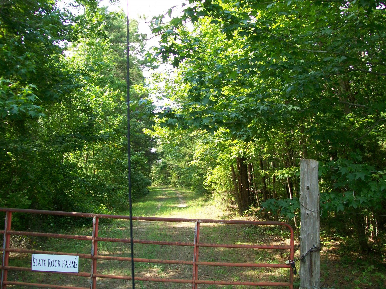 Vacant Land for Sale in West TN