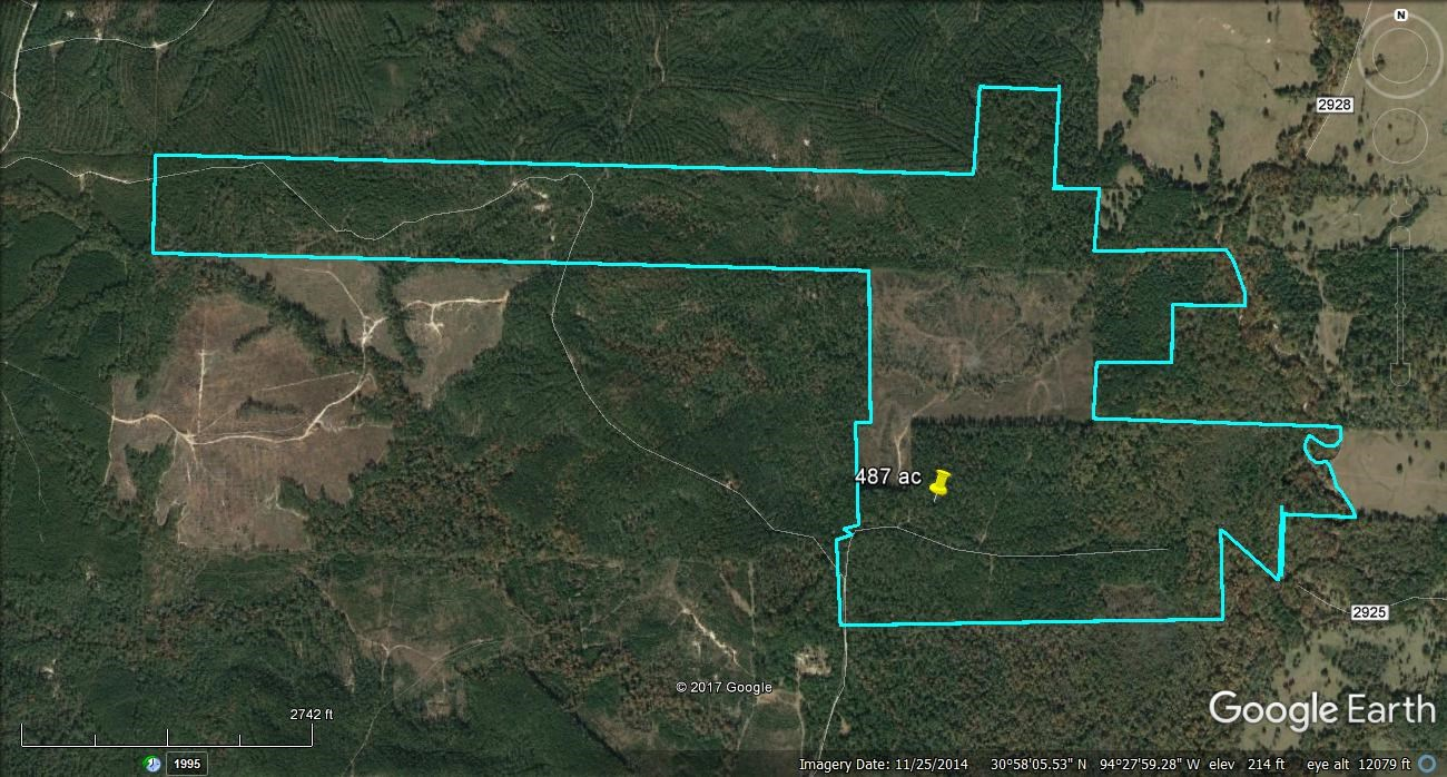 487 ACRES RECREATIONAL HUNTING LAND FOR SALE