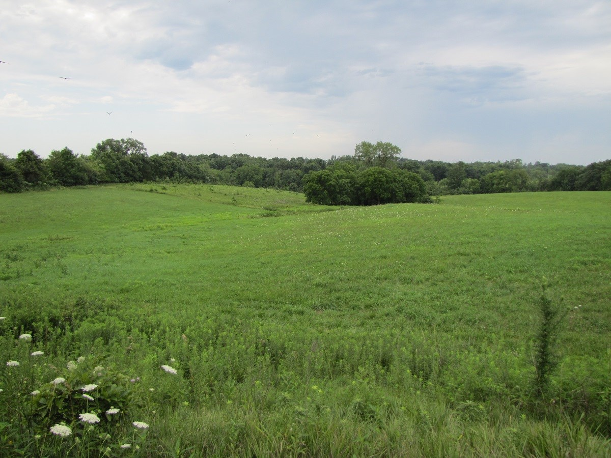 SE IOWA HUNTING, INVESTMENT, PASTURE, LAND FOR SALE IOWA