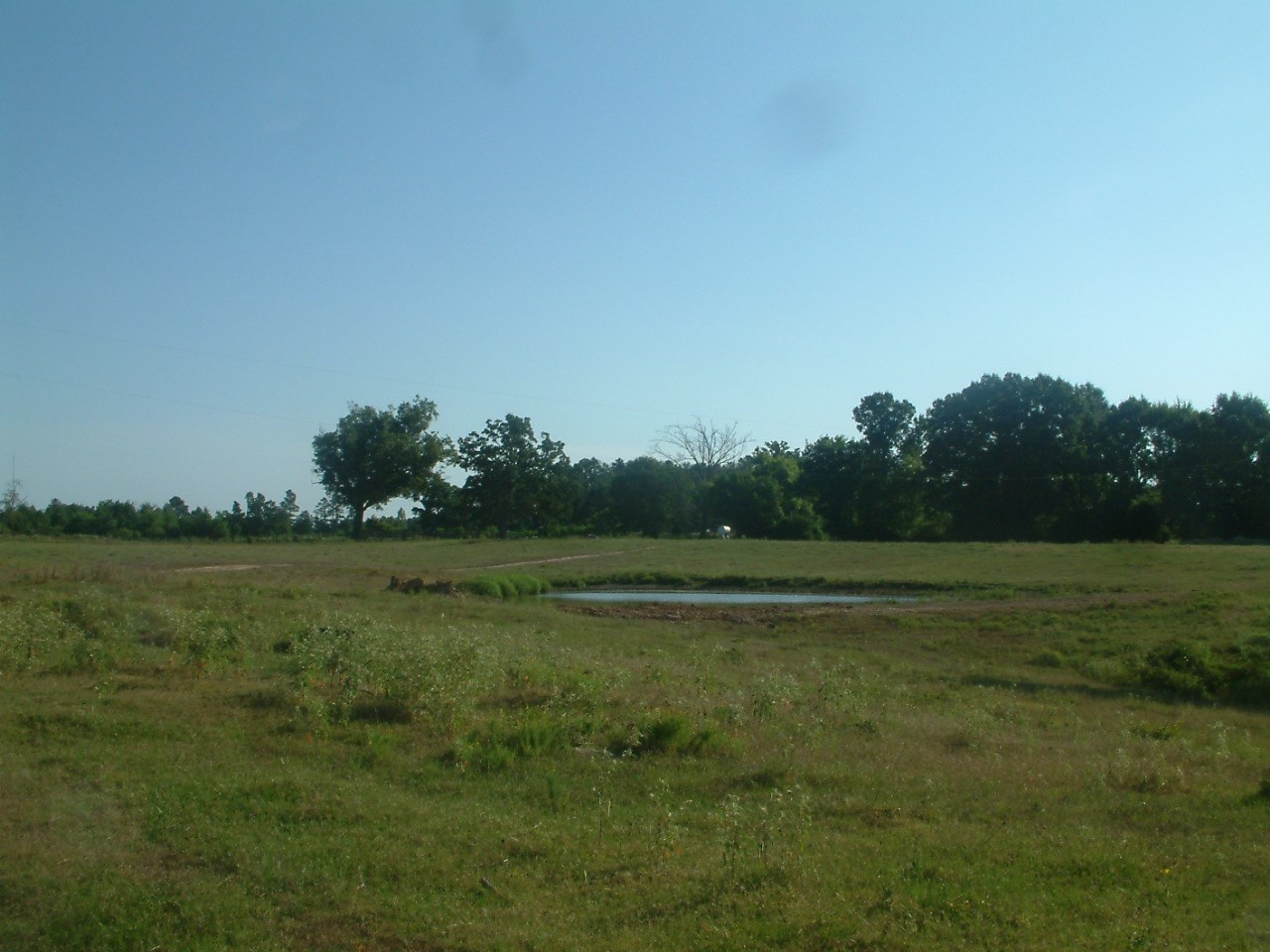 95 Acre Cattle/Hunting/Recreation Ranch For Sale With Home