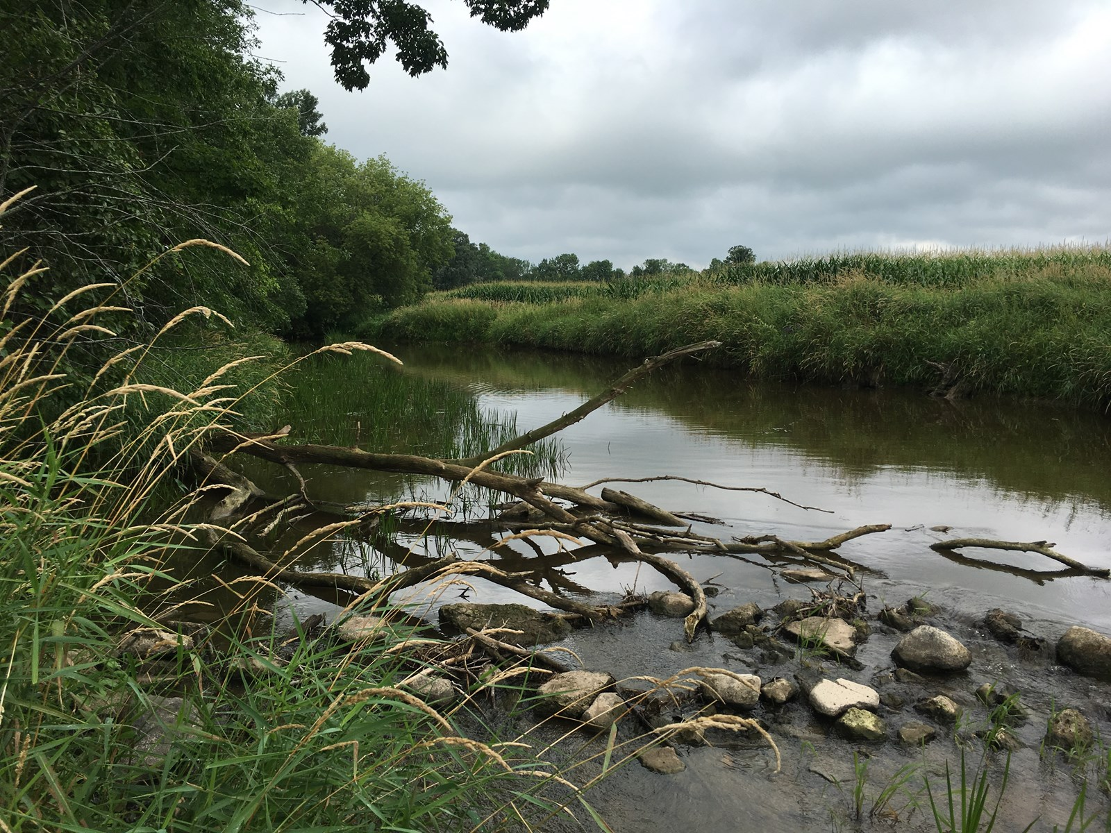 River Front For Sale with Hunting and Fishing Opportunities