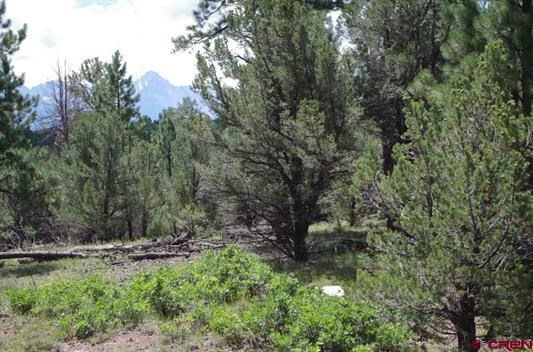 For Sale Colorado Mountain View Property Ponderosa Pines