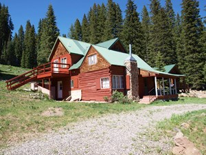 LOG CABIN FOR SALE IN THE COLORADO ROCKIES AT GRAND MESA RES