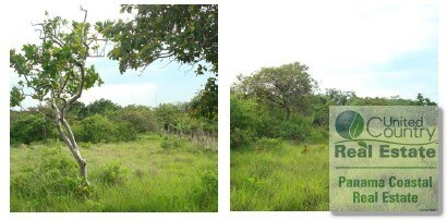 JUAN DIAZ OF ANTON Land for Sale in panama